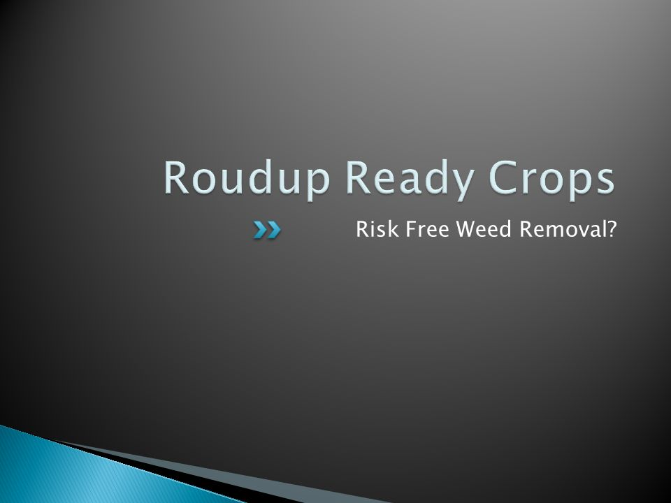 Risk Free Weed Removal