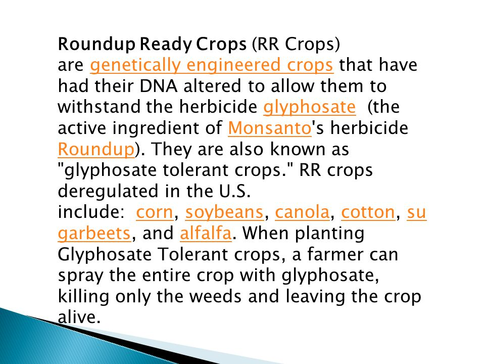 Roundup Ready Crops (RR Crops) are genetically engineered crops that have had their DNA altered to allow them to withstand the herbicide glyphosate (the active ingredient of Monsanto s herbicide Roundup).