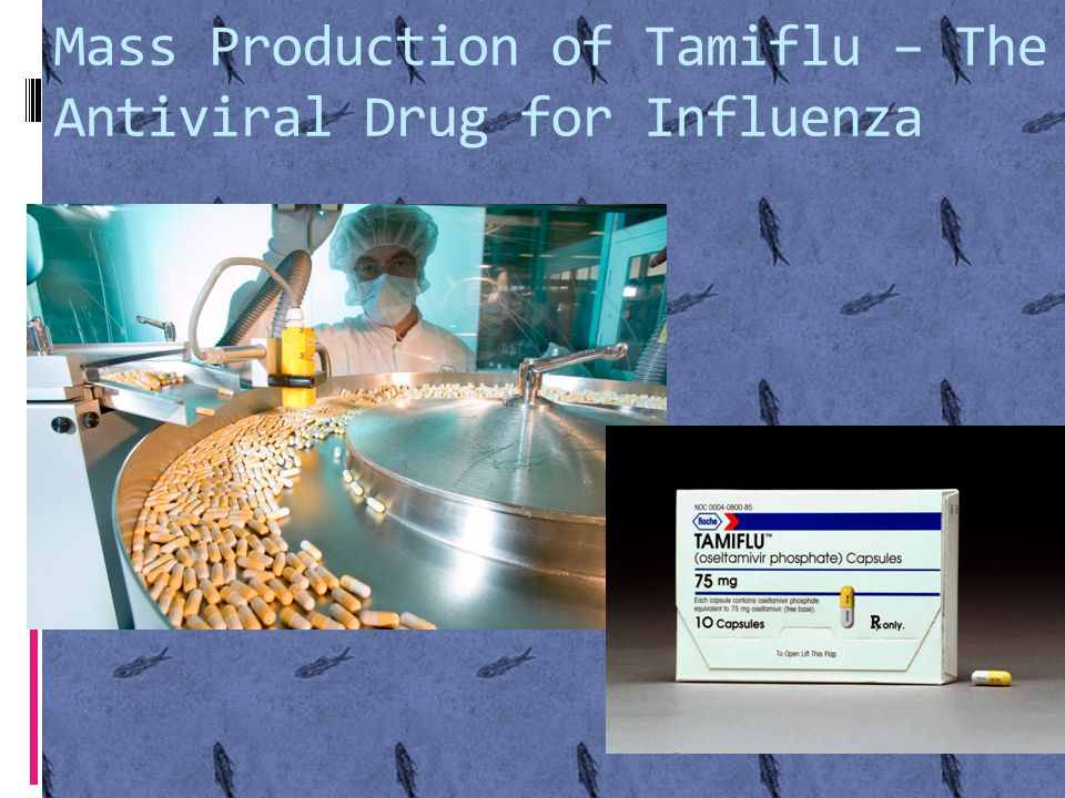 Mass Production of Tamiflu – The Antiviral Drug for Influenza