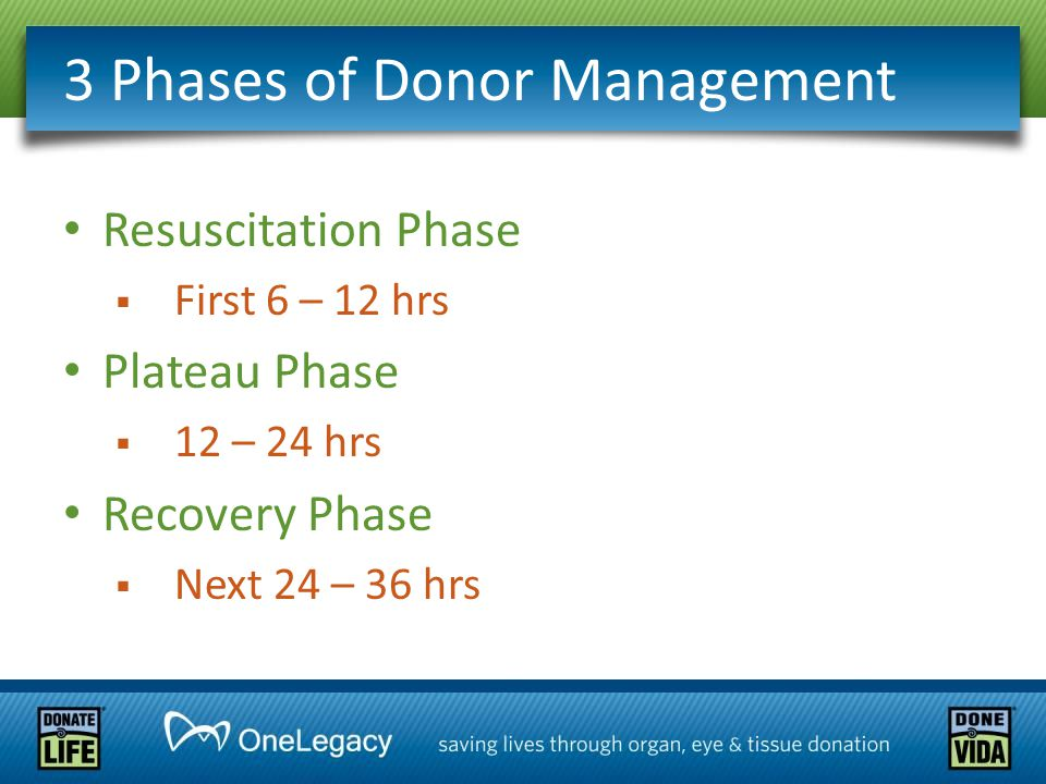 3 Phases of Donor Management Resuscitation Phase  First 6 – 12 hrs Plateau Phase  12 – 24 hrs Recovery Phase  Next 24 – 36 hrs