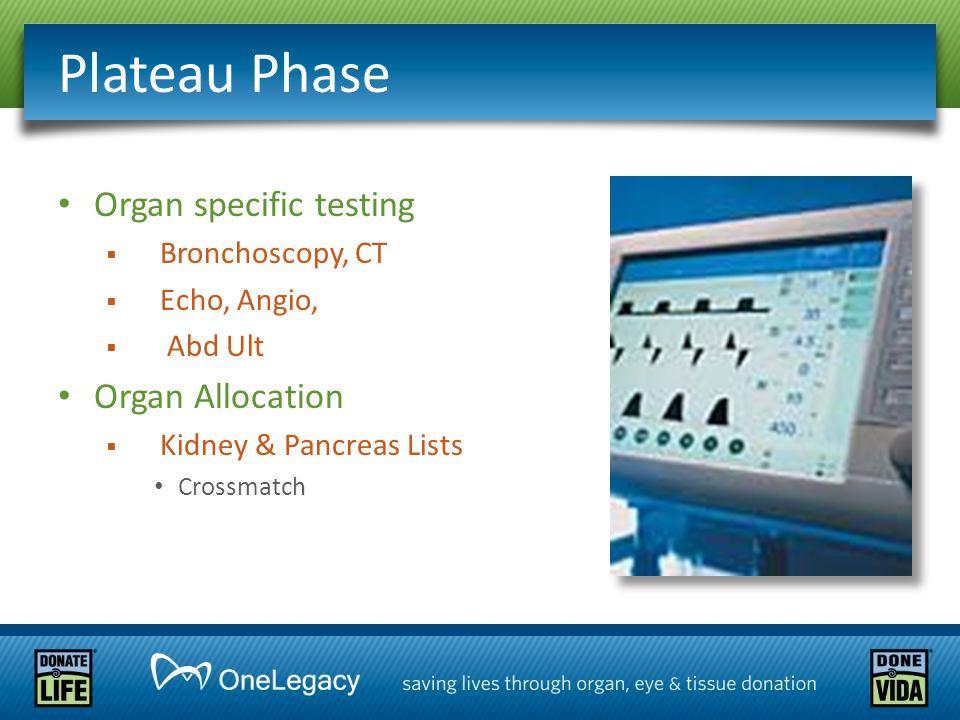 Organ specific testing  Bronchoscopy, CT  Echo, Angio,  Abd Ult Organ Allocation  Kidney & Pancreas Lists Crossmatch Plateau Phase