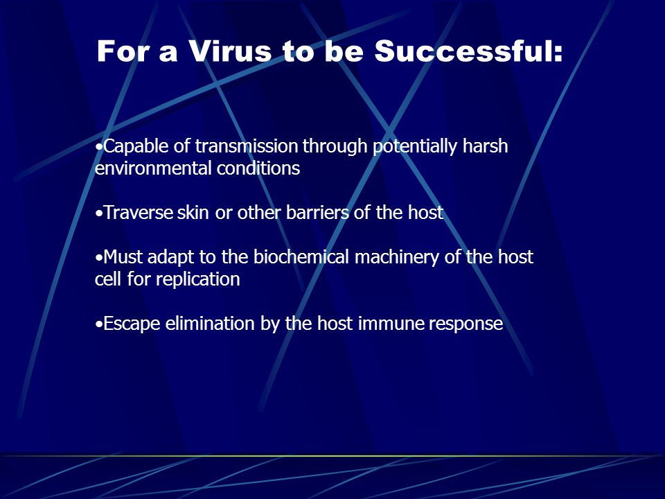 For a Virus to be Successful: Capable of transmission through potentially harsh environmental conditions Traverse skin or other barriers of the host M