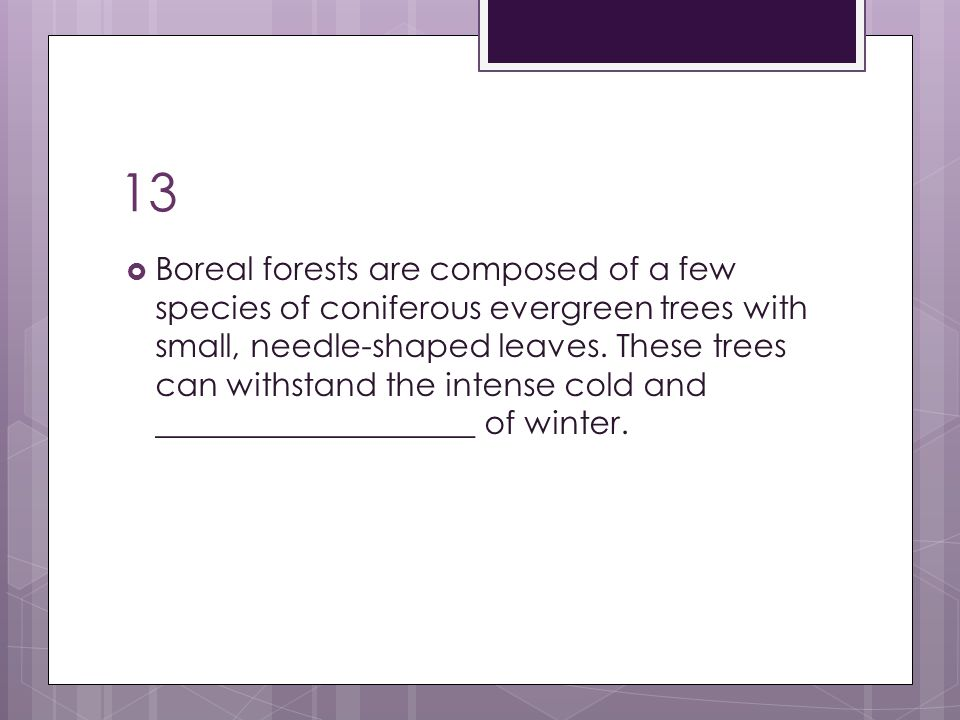 13  Boreal forests are composed of a few species of coniferous evergreen trees with small, needle-shaped leaves. These trees can withstand the intens