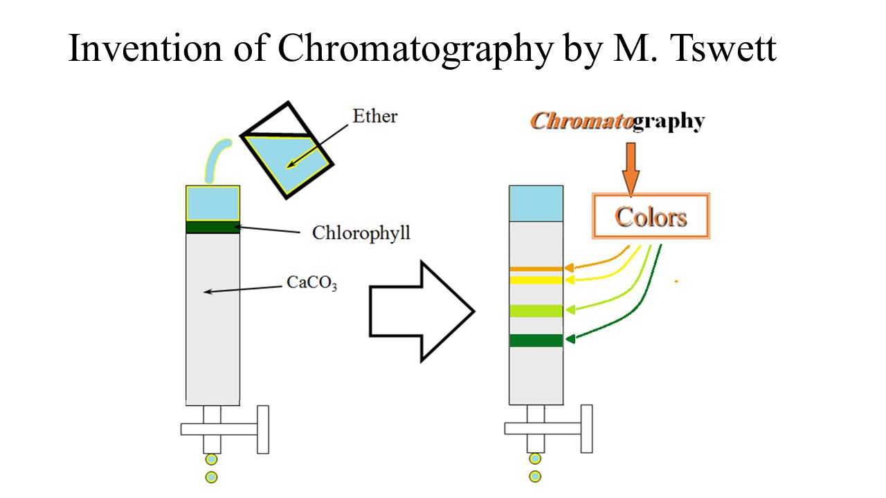 Invention of Chromatography by M. Tswett