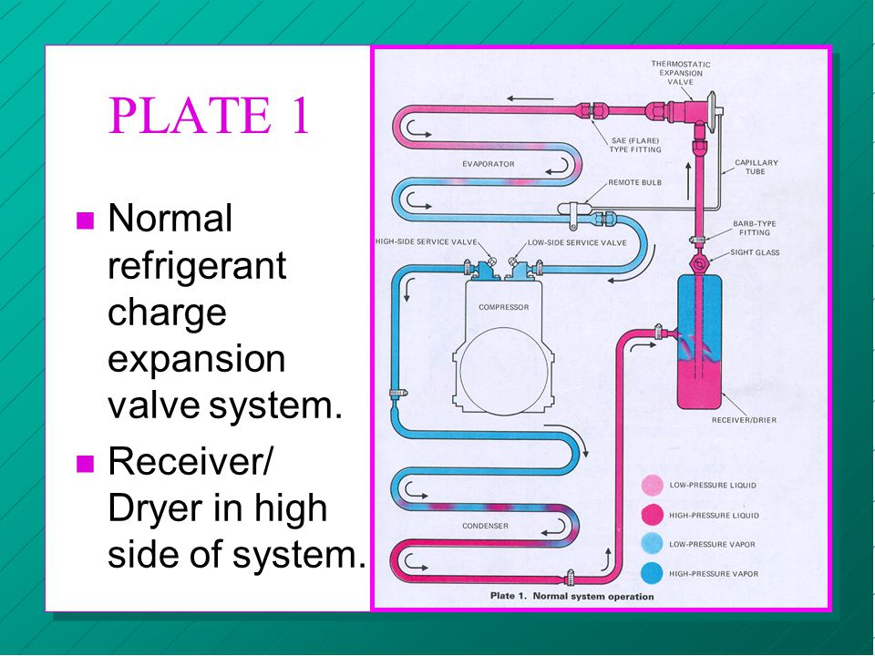 PLATE 1 n Normal refrigerant charge expansion valve system. n Receiver/ Dryer in high side of system.