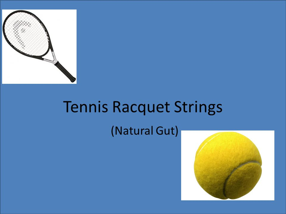 Tennis Racquet Strings (Natural Gut)