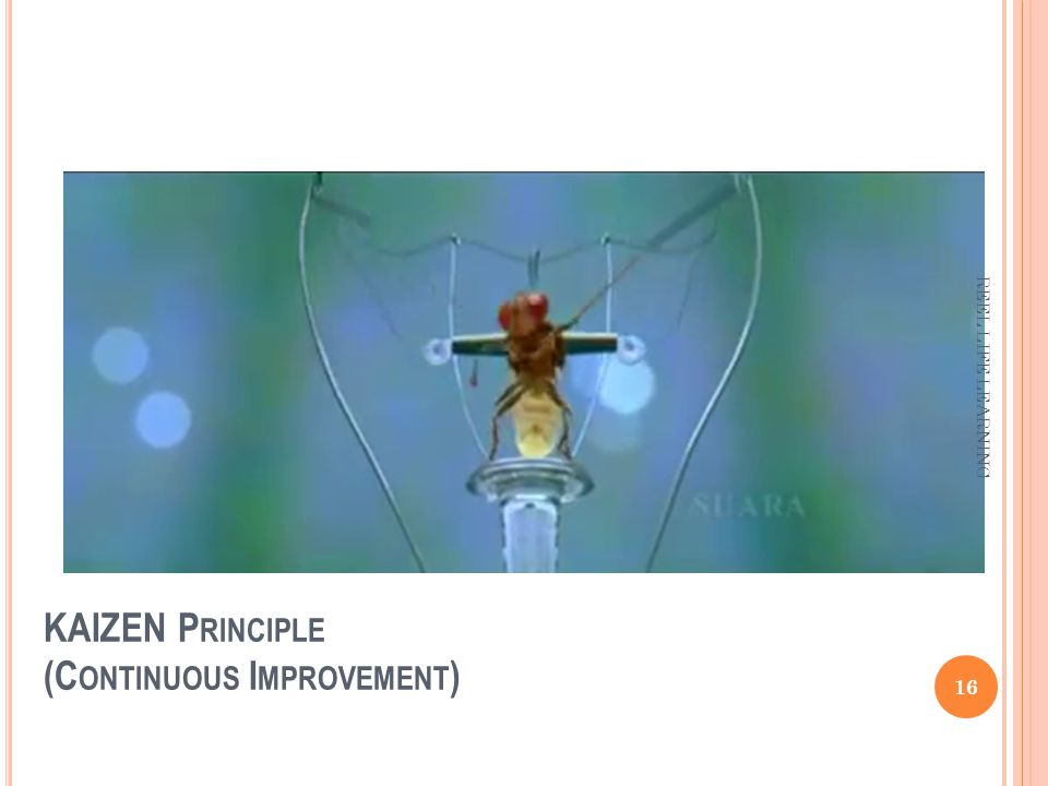 KAIZEN P RINCIPLE (C ONTINUOUS I MPROVEMENT ) 16 REEL LIFE LEARNING