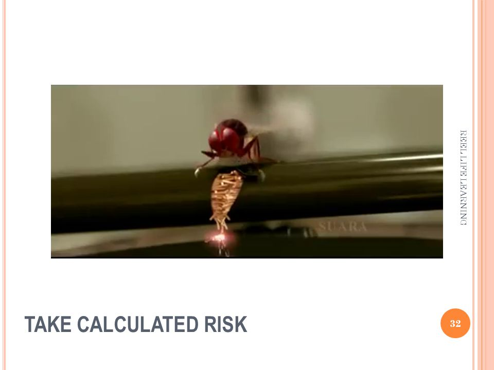 TAKE CALCULATED RISK 32 REEL LIFE LEARNING
