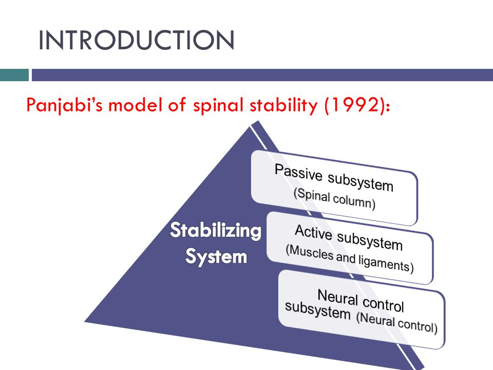 INTRODUCTION ( cont )  The major source of spinal stability comes from the second component of Panjabi s model because the passively supported spine collapses under 90 N of load.