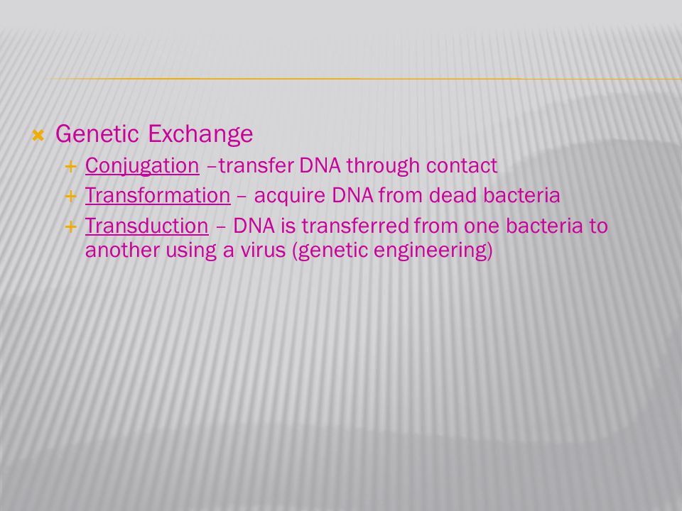 Genetic Exchange  Conjugation –transfer DNA through contact  Transformation – acquire DNA from dead bacteria  Transduction – DNA is transferred f