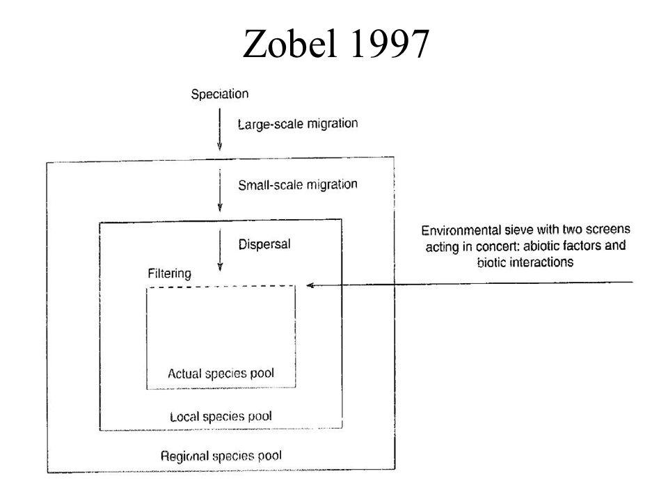 Zobel 1997