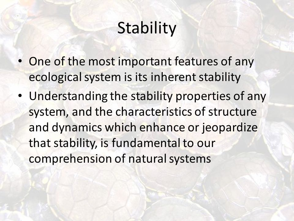 Stability One of the most important features of any ecological system is its inherent stability Understanding the stability properties of any system, and the characteristics of structure and dynamics which enhance or jeopardize that stability, is fundamental to our comprehension of natural systems