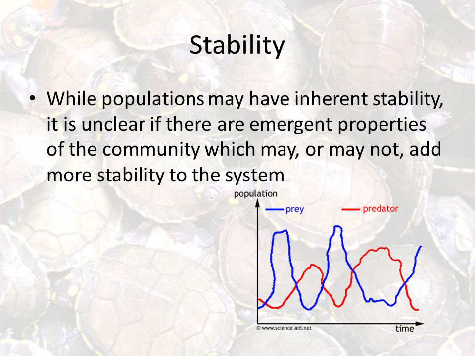Stability While populations may have inherent stability, it is unclear if there are emergent properties of the community which may, or may not, add more stability to the system