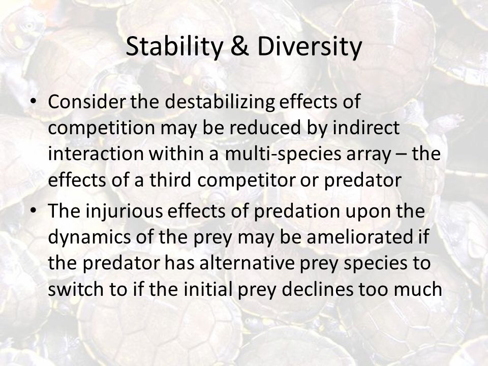 Stability & Diversity Consider the destabilizing effects of competition may be reduced by indirect interaction within a multi-species array – the effects of a third competitor or predator The injurious effects of predation upon the dynamics of the prey may be ameliorated if the predator has alternative prey species to switch to if the initial prey declines too much