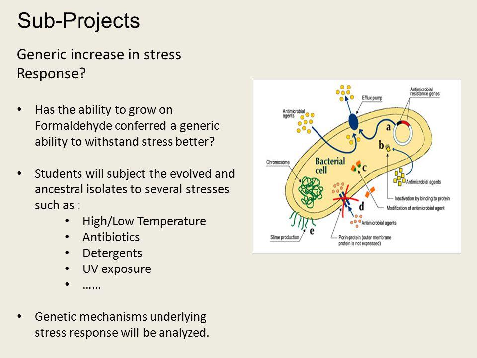 Generic increase in stress Response.