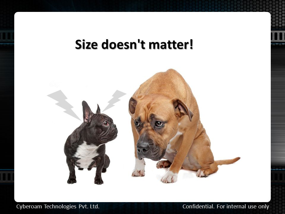 Size doesn t matter! Confidential. For internal use only Cyberoam Technologies Pvt. Ltd.