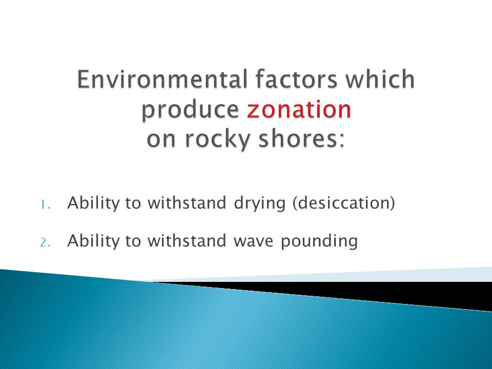 1. Ability to withstand drying (desiccation) 2. Ability to withstand wave pounding