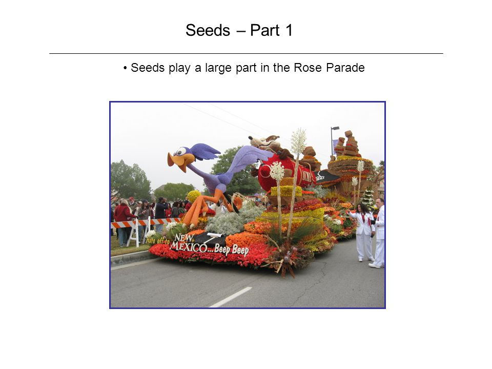 Seeds – Part 1 Seeds play a large part in the Rose Parade