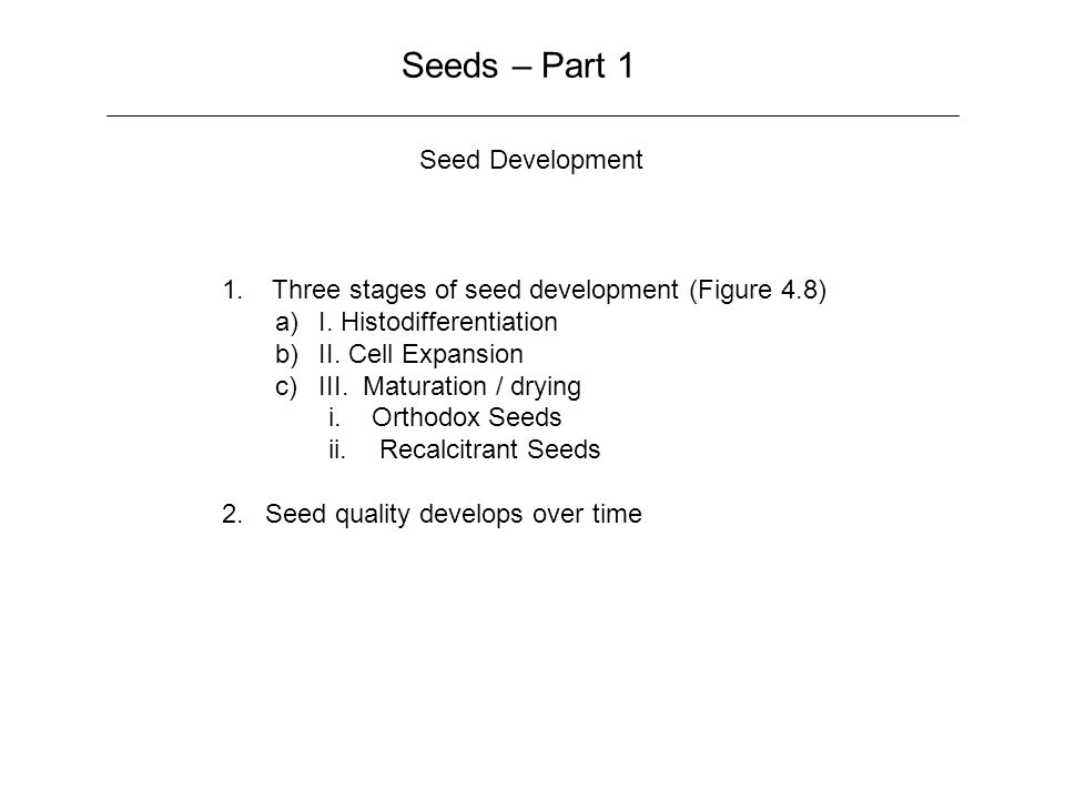 Seeds – Part 1 Seed Development 1.Three stages of seed development (Figure 4.8) a)I.