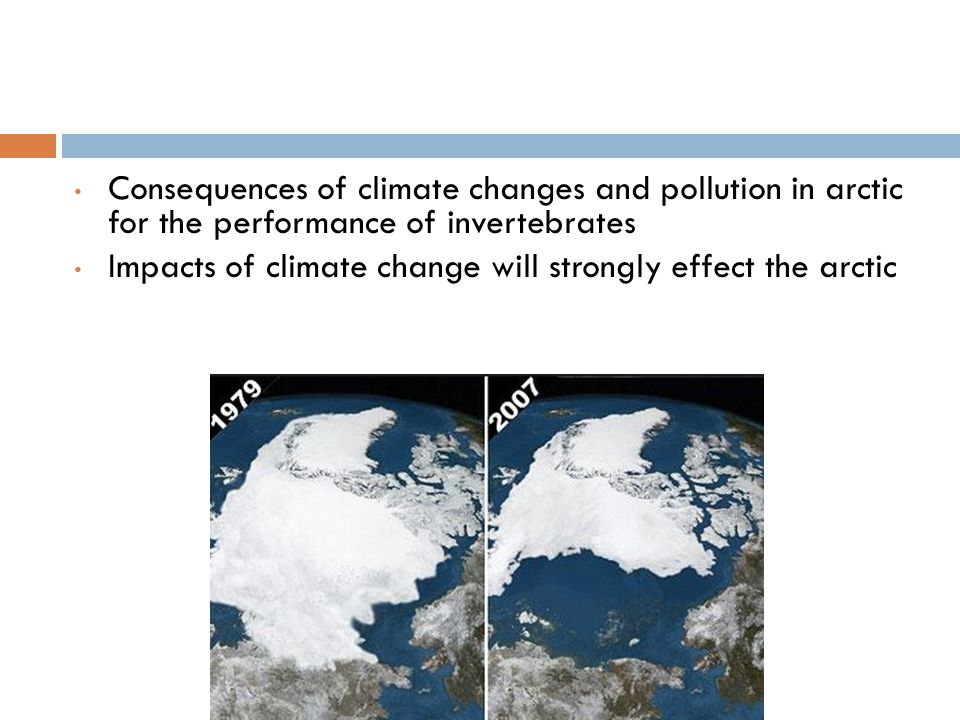 Consequences of climate changes and pollution in arctic for the performance of invertebrates Impacts of climate change will strongly effect the arctic