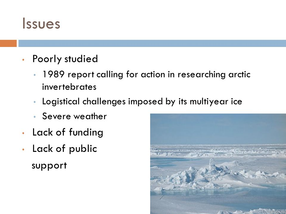 Issues Poorly studied 1989 report calling for action in researching arctic invertebrates Logistical challenges imposed by its multiyear ice Severe weather Lack of funding Lack of public support