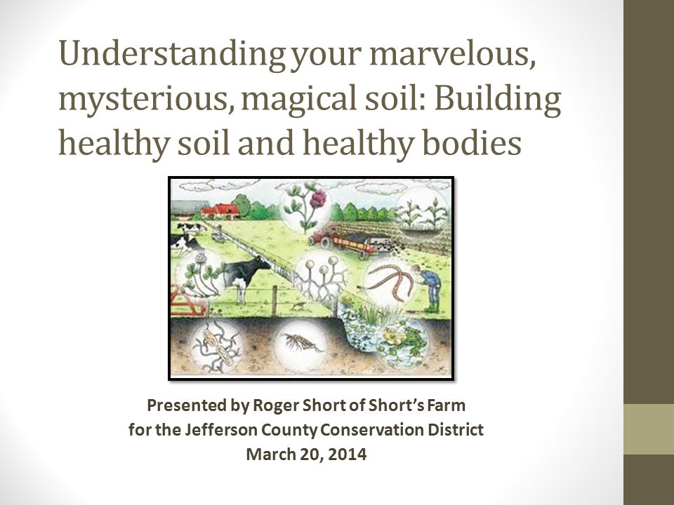 Why chemical fertilizers, fungicides and pesticides are deadly to soil health.