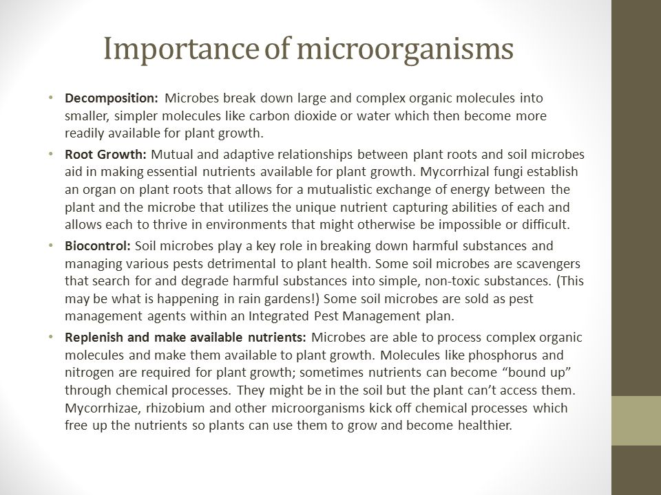 Importance of microorganisms Decomposition: Microbes break down large and complex organic molecules into smaller, simpler molecules like carbon dioxid