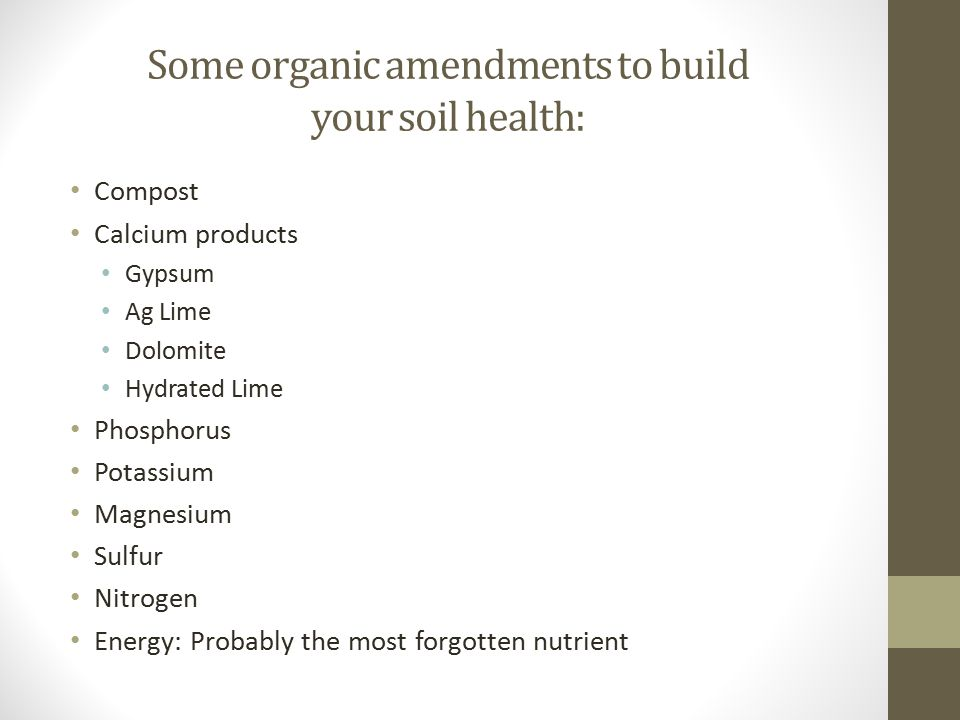 Some organic amendments to build your soil health: Compost Calcium products Gypsum Ag Lime Dolomite Hydrated Lime Phosphorus Potassium Magnesium Sulfu