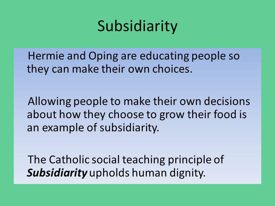 Subsidiarity Hermie and Oping are educating people so they can make their own choices.