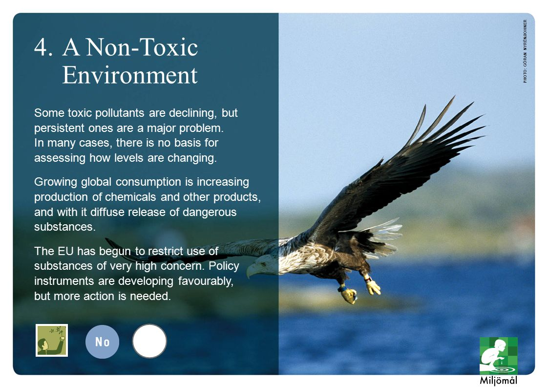 PHOTO: GÖRAN NYRÉN/JOHNER 4.A Non-Toxic Environment Some toxic pollutants are declining, but persistent ones are a major problem.