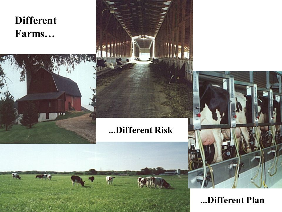 Different Farms…...Different Risk...Different Plan