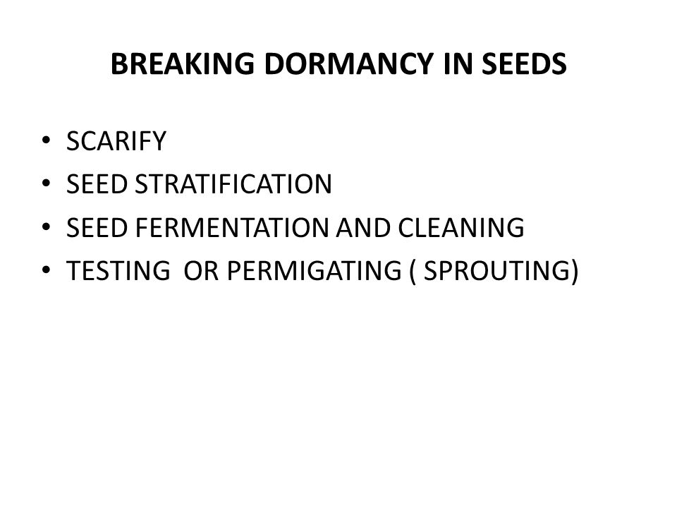 BREAKING DORMANCY IN SEEDS SCARIFY SEED STRATIFICATION SEED FERMENTATION AND CLEANING TESTING OR PERMIGATING ( SPROUTING)