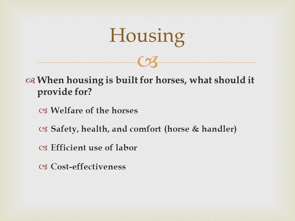   When housing is built for horses, what should it provide for.
