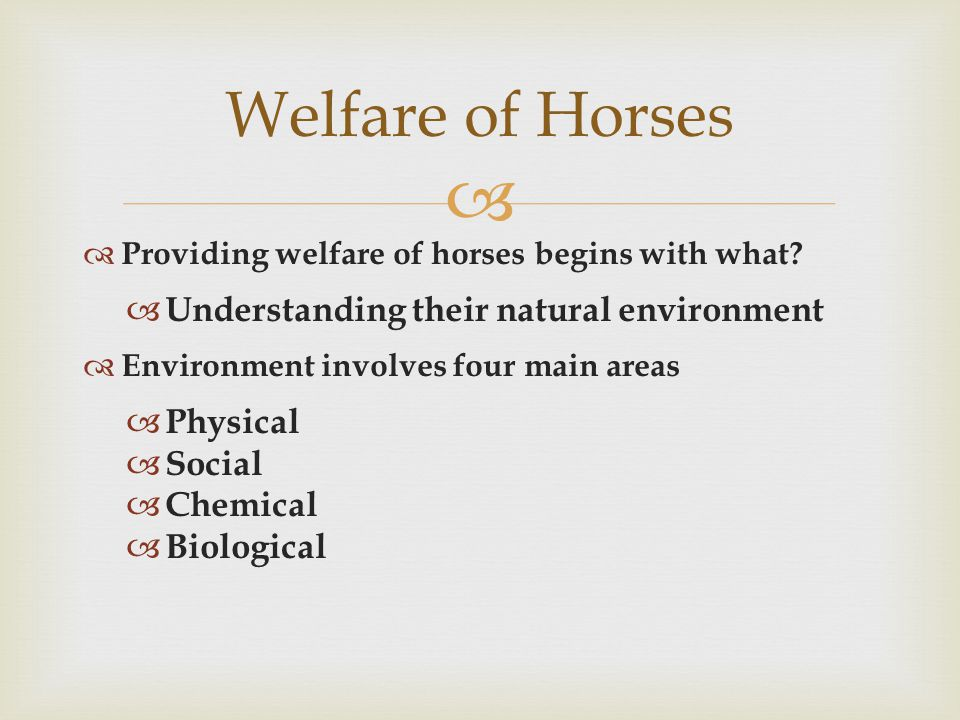   Physical Environment includes:  Temperature  Heat-Loss Factors  Stall Space  Feeder Space  Flooring Welfare of Horses