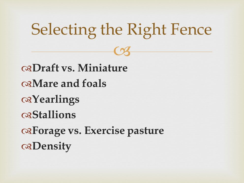   Draft vs. Miniature  Mare and foals  Yearlings  Stallions  Forage vs.