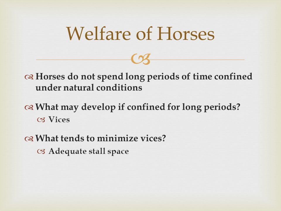   Fresh air should always be available in barns  CO 2, water vapor, and manure need to be removed  Adequate ventilation will  Reduce air contaminants such as dust, mold, and irritating gases Welfare of Horses
