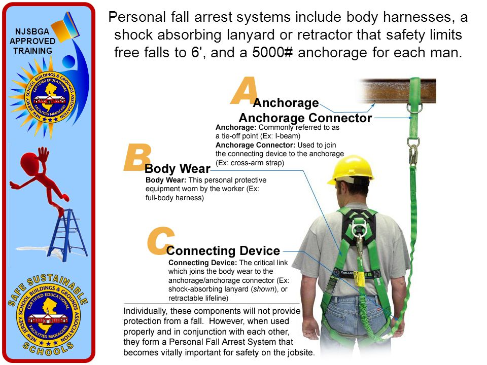 NJSBGA APPROVED TRAINING Personal fall arrest systems include body harnesses, a shock absorbing lanyard or retractor that safety limits free falls to