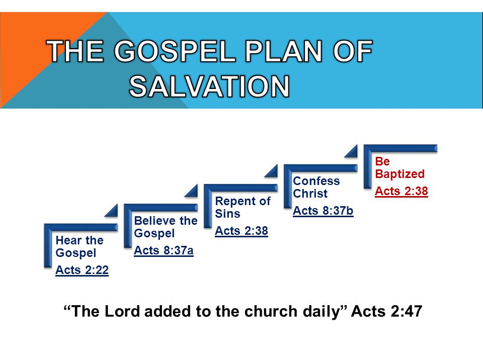 "Hear the Gospel Acts 2:22 Believe the Gospel Acts 8:37a Repent of Sins Acts 2:38 Confess Christ Acts 8:37b Be Baptized Acts 2:38 ""The Lord added to th"