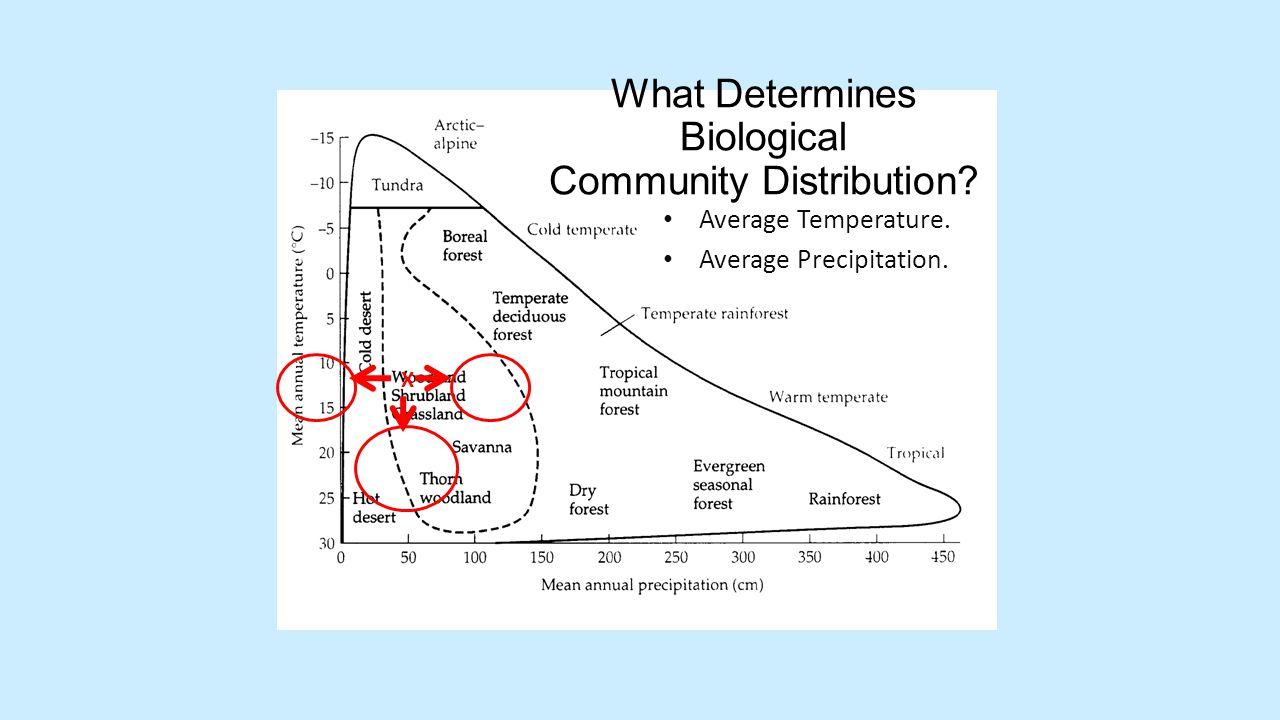 What Determines Biological Community Distribution? Average Temperature. Average Precipitation. X