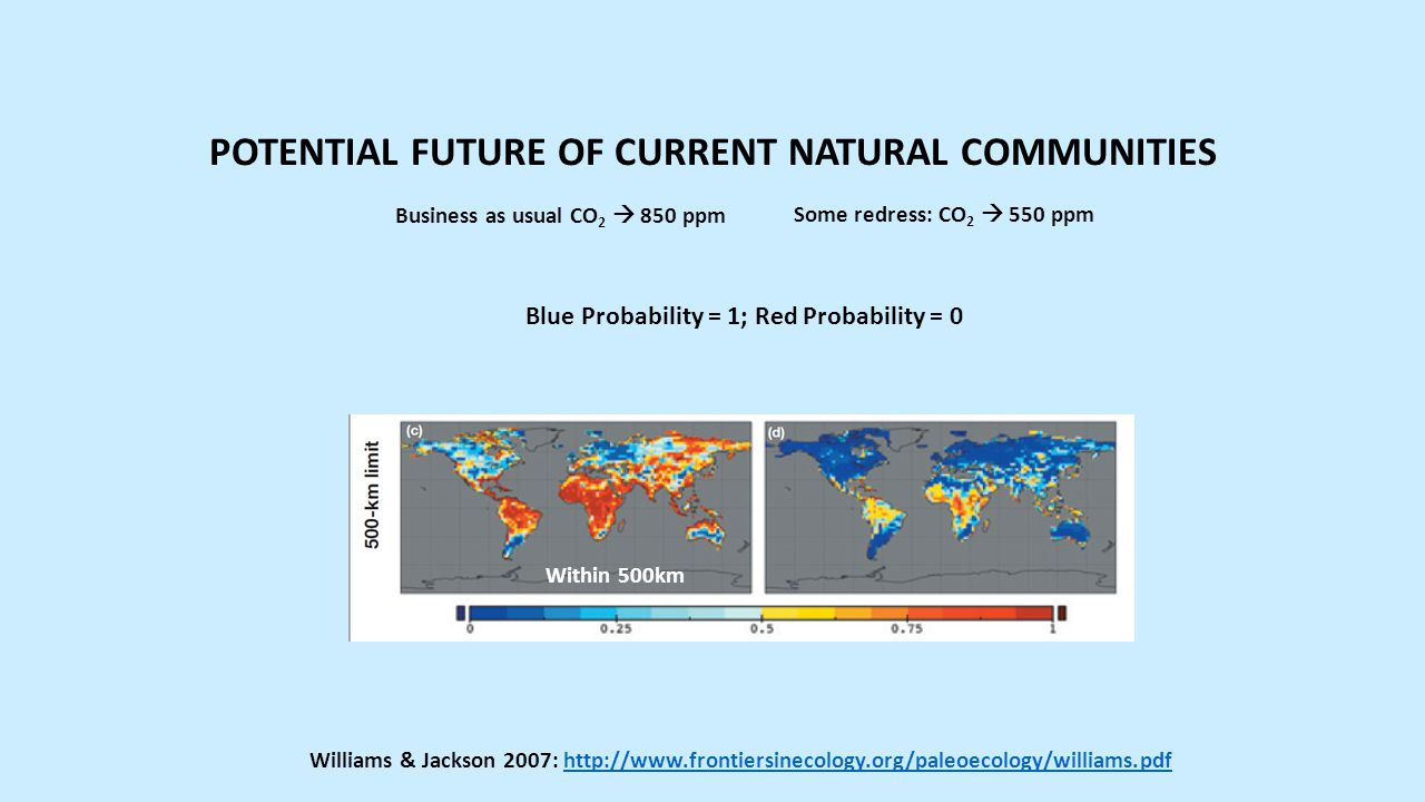 Business as usual CO 2  850 ppm Some redress: CO 2  550 ppm Williams & Jackson 2007: http://www.frontiersinecology.org/paleoecology/williams.pdfhttp://www.frontiersinecology.org/paleoecology/williams.pdf POTENTIAL FUTURE OF CURRENT NATURAL COMMUNITIES Within 500km Blue Probability = 1; Red Probability = 0