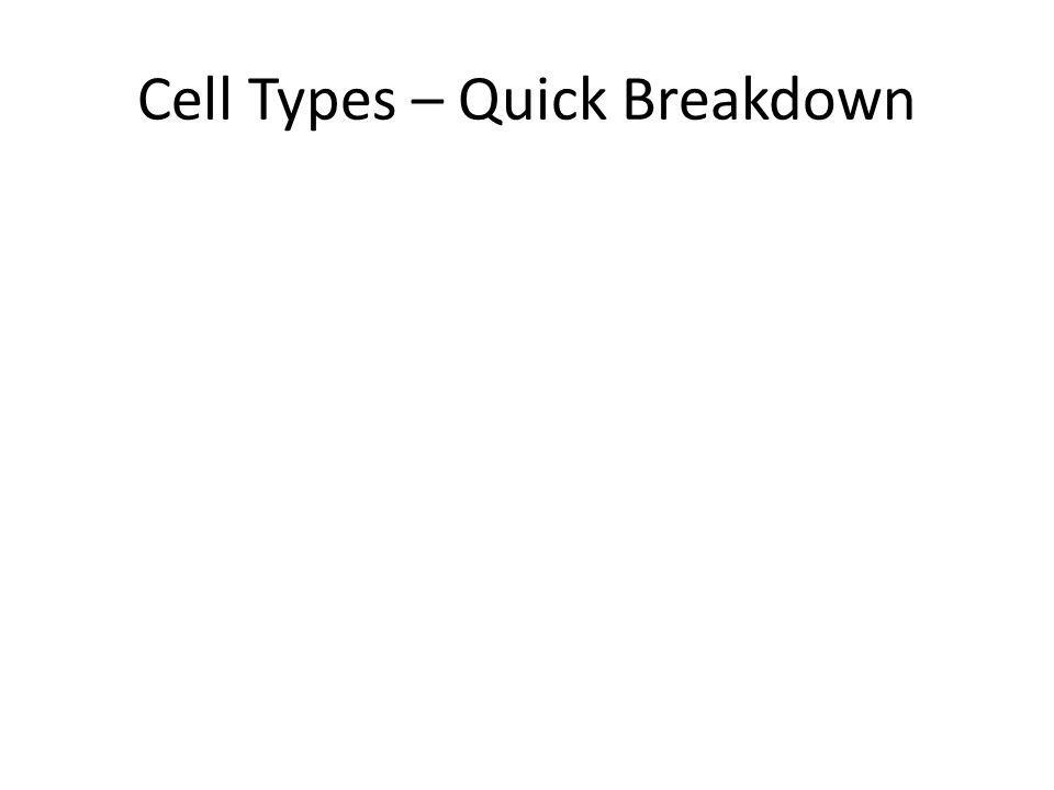 Cell Types – Quick Breakdown