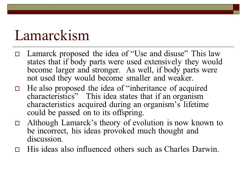 """Lamarckism  Lamarck proposed the idea of """"Use and disuse"""" This law states that if body parts were used extensively they would become larger and stron"""