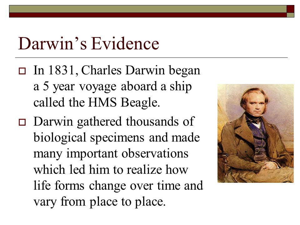 Darwin's Evidence  In 1831, Charles Darwin began a 5 year voyage aboard a ship called the HMS Beagle.  Darwin gathered thousands of biological speci
