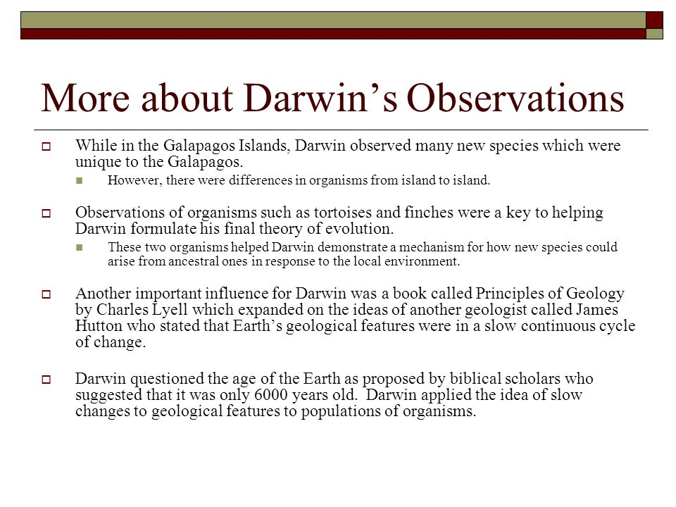 More about Darwin's Observations  While in the Galapagos Islands, Darwin observed many new species which were unique to the Galapagos. However, there