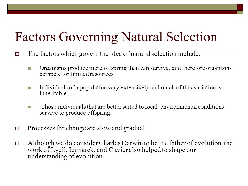 Factors Governing Natural Selection  The factors which govern the idea of natural selection include: Organisms produce more offspring than can surviv