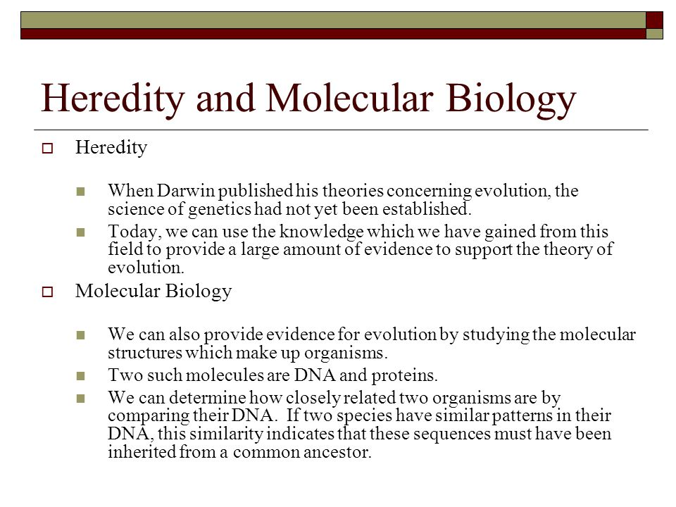Heredity and Molecular Biology  Heredity When Darwin published his theories concerning evolution, the science of genetics had not yet been establishe