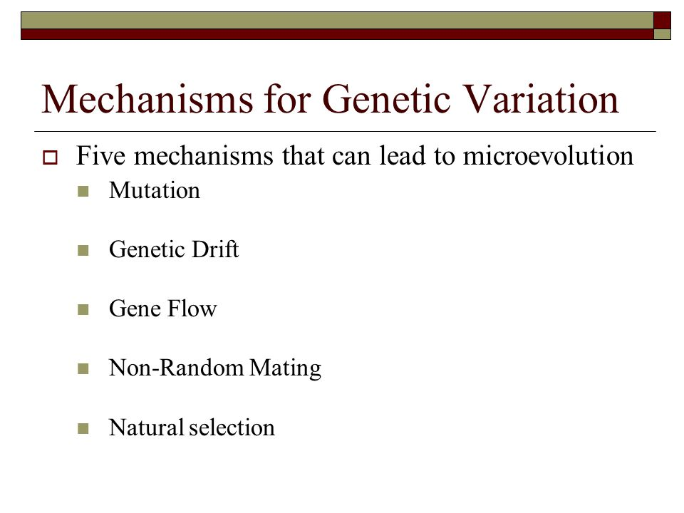 Mechanisms for Genetic Variation  Five mechanisms that can lead to microevolution Mutation Genetic Drift Gene Flow Non-Random Mating Natural selectio
