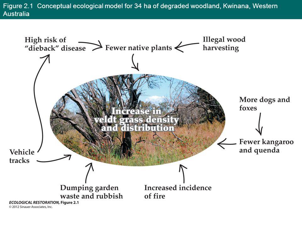 Figure 2.1 Conceptual ecological model for 34 ha of degraded woodland, Kwinana, Western Australia
