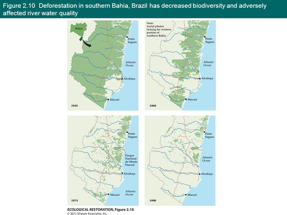 Figure 2.10 Deforestation in southern Bahia, Brazil has decreased biodiversity and adversely affected river water quality