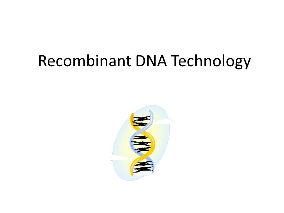 Recombinant DNA Technology Plasmids are considered extrachromosomal DNA because they are present in the bacterial cytoplasm in addition to the bacterial chromosome Plasmids can be used as vectors, pieces of DNA that can accept, carry, and replicate (clone) other pieces of DNA